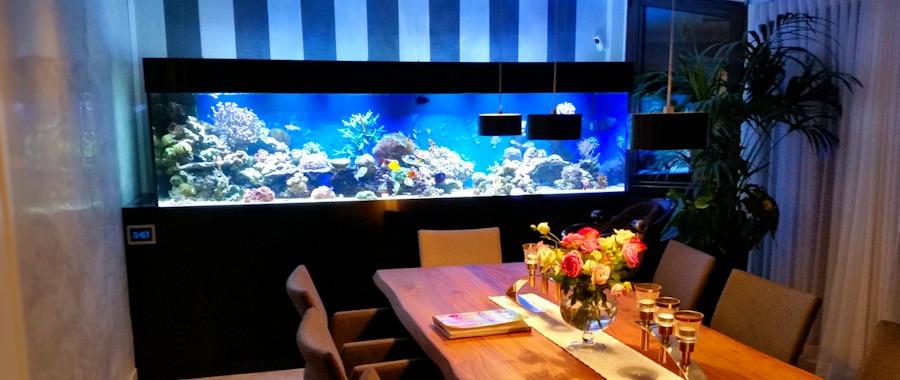 Beliebt Referenzen Meerwasser – Aquarium Aquaristik Center Ost GmbH ET38